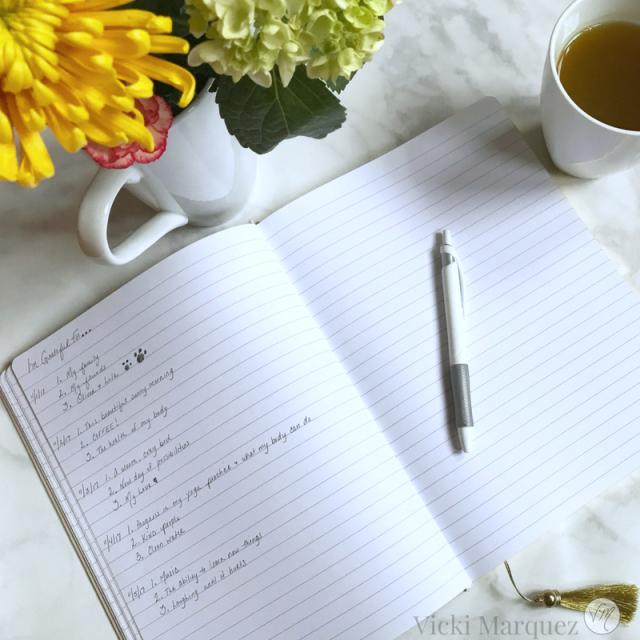 Gratitude Journal VM